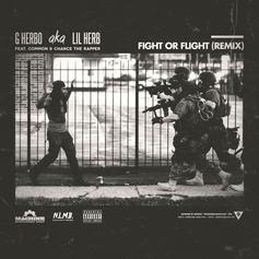 Fight Or Flight (Remix)