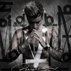 What Do You Mean (Remix)