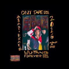 Wu-Tang Forever (Remix) (CDQ)