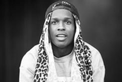 ASAP Rocky Denies Smacking A Fan