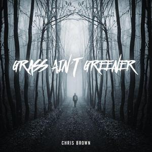 Chris Brown - Grass Ain't Greener [New Song]