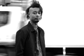 "Danny Brown Announces ""The Old Danny Brown"" Tour"