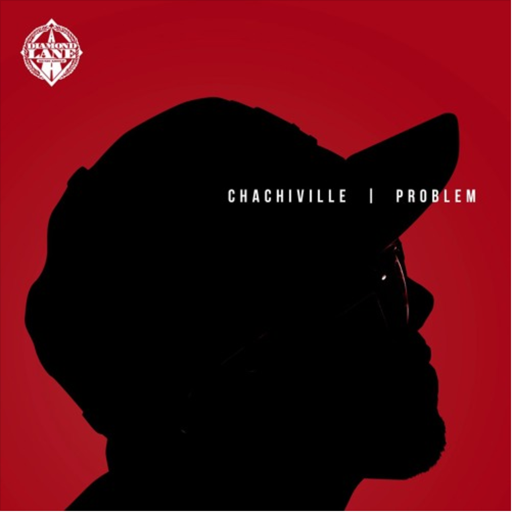Problem Did It For The Culture MP3 Download